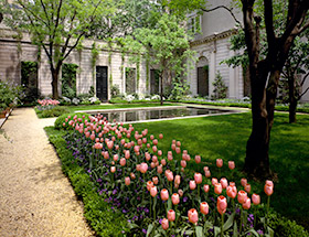 photo of garden with tulips and fountain